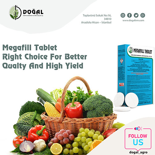 Megafill Tablet